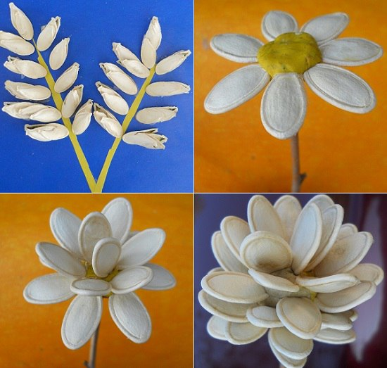 Идеи поделок из тыквенных семечек